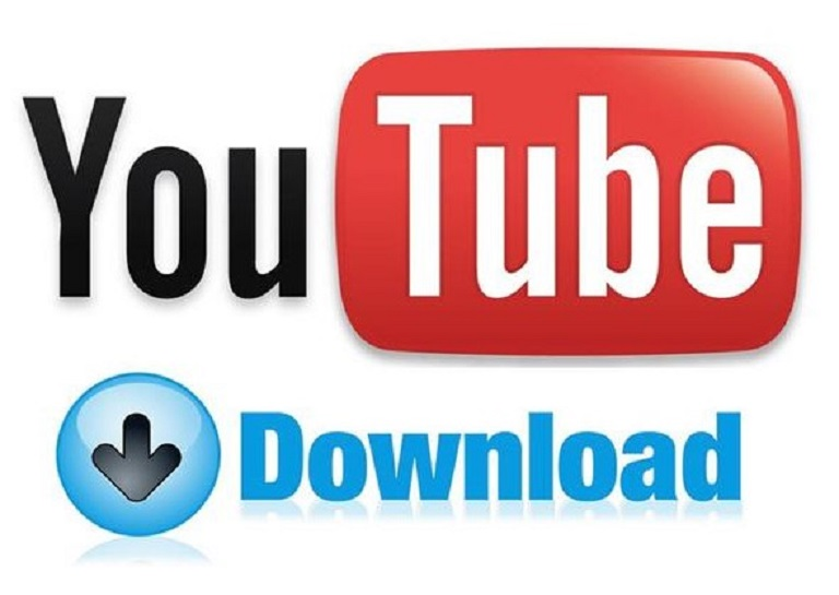 The Video Downloader
